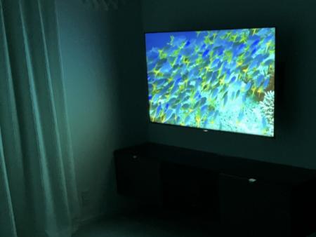SONY BRAVIA KJ-55X8550H[55インチ]液晶テレビの暗闇時の映り方
